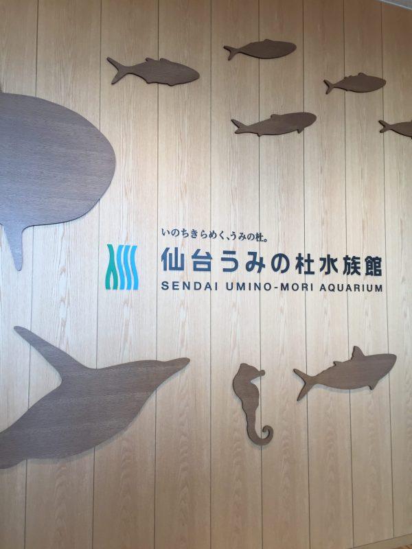 仙台市「うみの杜水族館」は子連れにおすすめ!